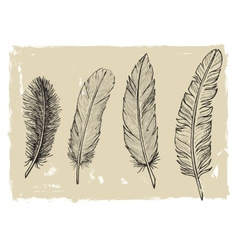 Vintage feather vector image