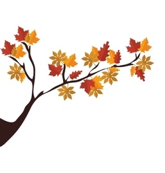 Tree branch with dry leaves vector