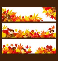 Autumn leaf banner border for fall season design vector