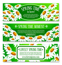 Spring daisy flowers banner set design vector