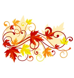 Autumn colorful leaves vector