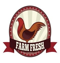 Farm fresh chicken resize vector