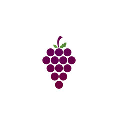 grapes logo template vector image