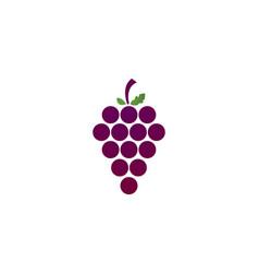 Grapes logo template vector
