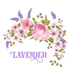 The lavender sign vector