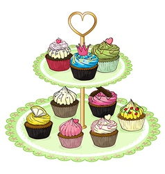 A cupcake tray with cupcakes vector image