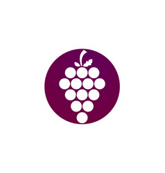 Grapes logo template vector