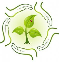 Green life in hands vector vector