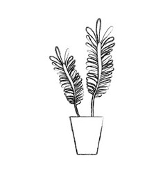 figure naturals plants inside pot with leaves vector image vector image