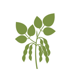 Soybean silhouette vector
