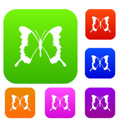 Swallowtail butterfly set collection vector