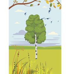 Birch and swallows summer landscape vector