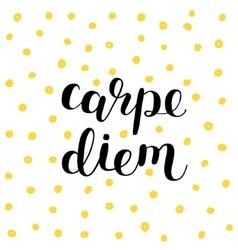Carpe diem seize the day brush lettering vector