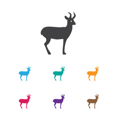 of zoo symbol on deer icon vector image vector image