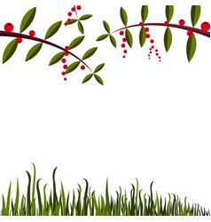 Simple background with leaf grass and berry vector