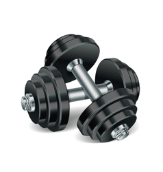 Metal realistic dumbbells vector