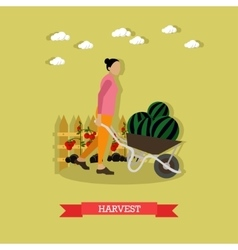 Young woman gather harvest flat design vector