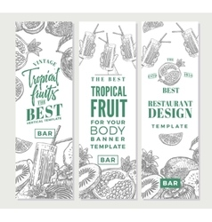 Tropical fruits sketch vertical banners vector