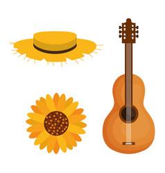 Festa junina objects design vector