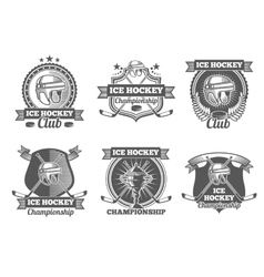 Ice hockey vintage labels logos emblems vector image vector image