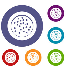 Peppercorns on a plate icons set vector