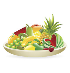 bowl of fruit vector image