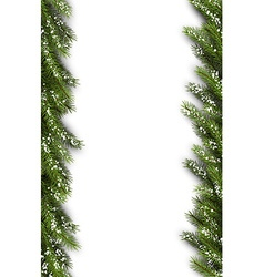 Card with fir branches vector
