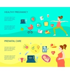 Pregnancy Compositions Set vector image
