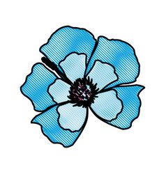 Drawing blue flower decoration floral ornament vector