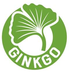 ginkgo biloba symbol vector image vector image
