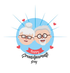 grandparent face with glasses and hairstyle vector image