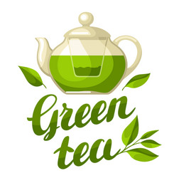 green tea with kettle of tea and vector image