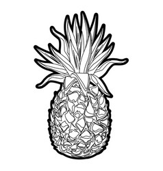 Pineapple tropical fruit tasty outline vector