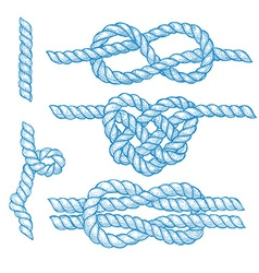 Set of engraved knots and ropes vector image