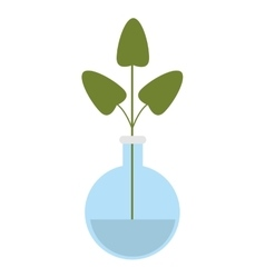 Plant in flask icon vector
