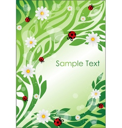 Floral elements and insects vector