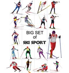 Ski sport vector