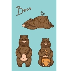 bear in different pose vector image