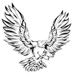 Monochrome eagle during landing vector