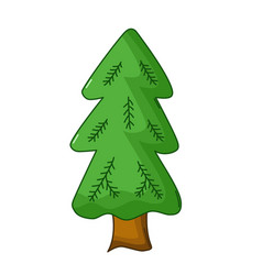 spruce tree icon cartoon style vector image vector image