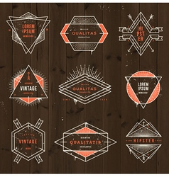 Grunge hipster signs vector