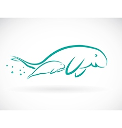 Dugongs vector