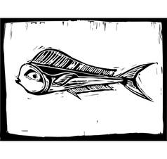 Mahi mahi fish 1 vector