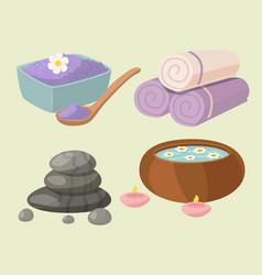 spa treatment beauty vector image