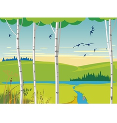 Birch landscape and swallows vector