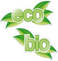 Eco and bio vector image