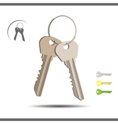 Bunch of keys vector