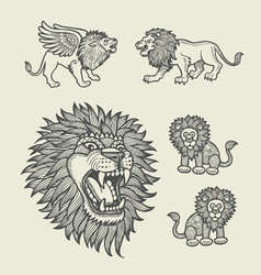 Lion decoration sketches vector