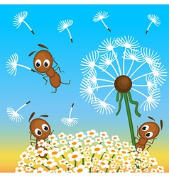 ants and dandelion vector image