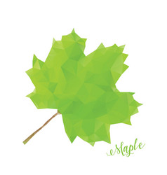 Green maple leaf in low poly style vector